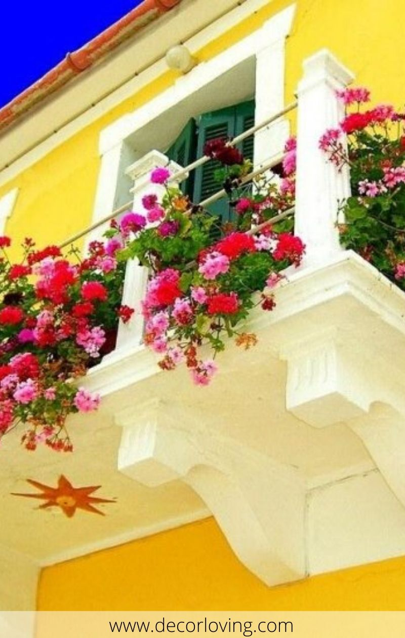 9 Beautiful Balcony Plants Ideas To Decorate Your Home