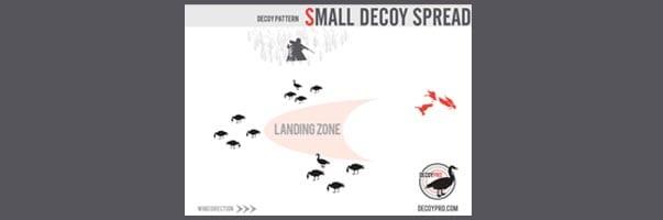Small Goose Decoy Spread