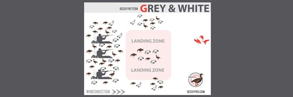 Specklebelly Goose Hunting Spreads