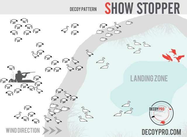 Snow Goose Hunting Over Water: Snow Goose Water Spread