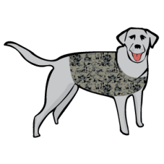Duck Hunting Gear: Dog Wearing Camo Vest