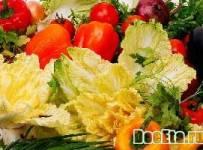 vegitarianstvo-veganstvo