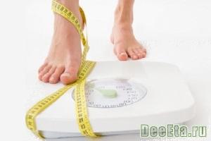 principy-diety