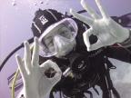 I ♥ diving!