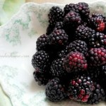 How To Keep Your Berries From Molding NO text