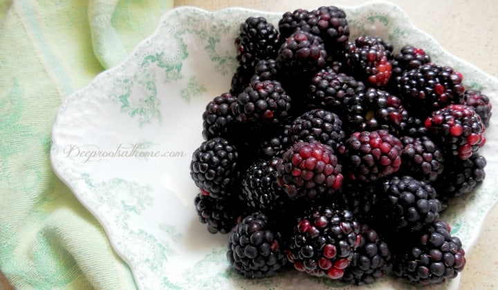 How To Keep Your Beautiful Berries From Molding