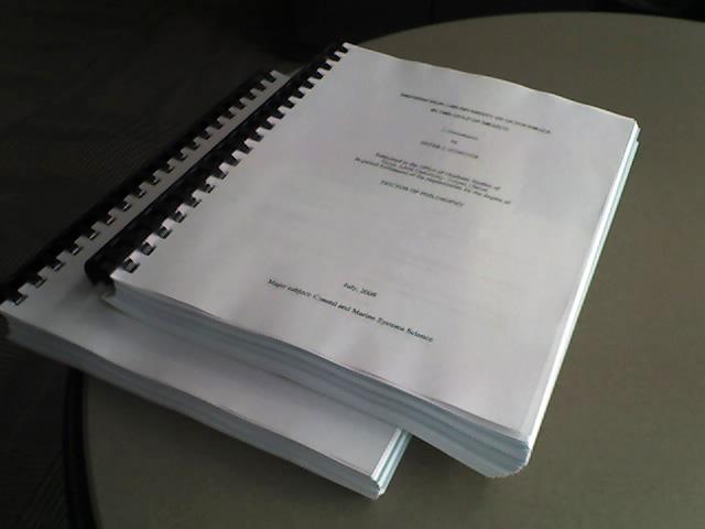 phd thesis on leadership styles