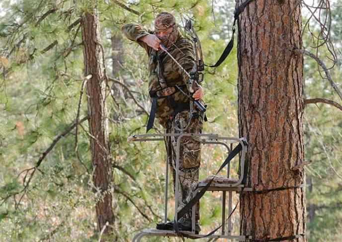 Crossbow Vs Roundup Bow Hunting Tips-some Quick Tips To Make You A Better