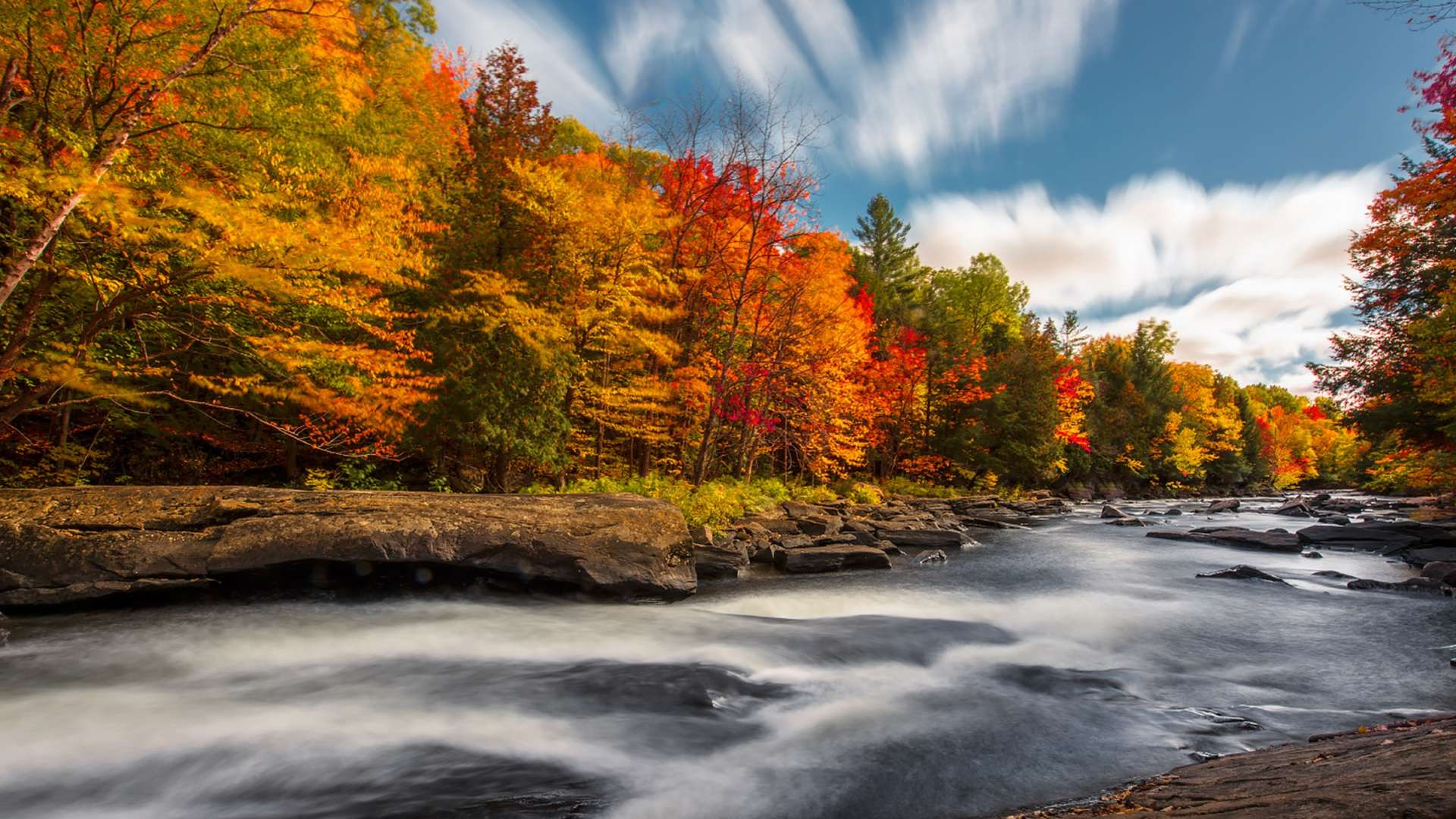 Fall Trees Wallpaper Top 10 Reasons To Visit Muskoka In Autumn