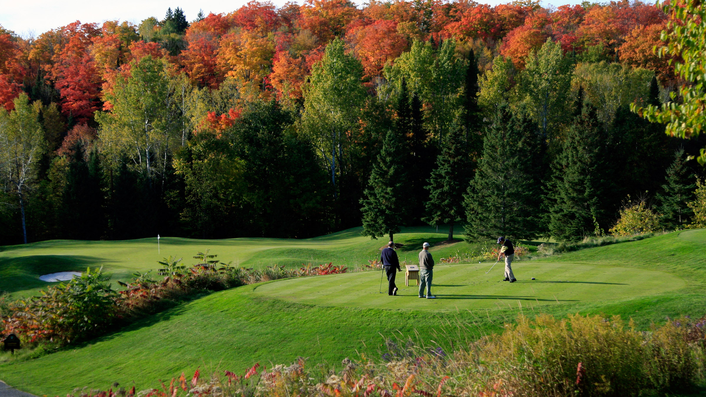 Fall Wallpaper With Deer Deerhurst Resort Muskoka Ontario