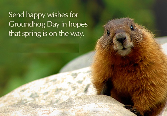 Quotes About Changing The World Wallpaper 2nd Feb 2019 Happy Groundhog Day Quotes Images Wishes