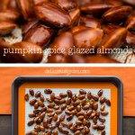 pumpkin spice glazed almonds (vegan and paleo)