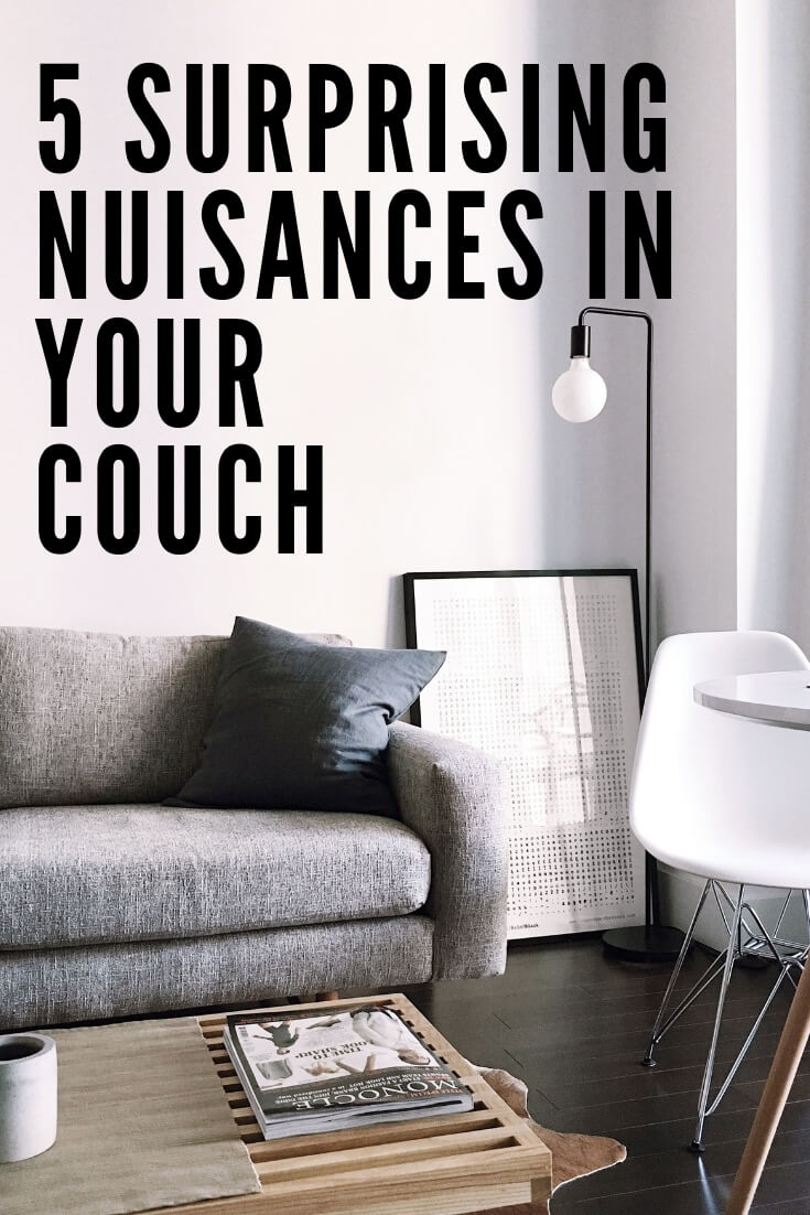 Couch Gross These 5 Gross Things Could Be Hiding In Your Couch Delta Chem Dry