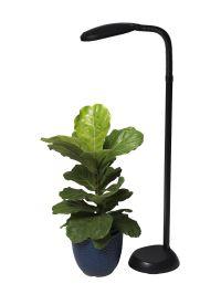 CFL Grow Light - Full Spectrum Floor Plant Lamp ...