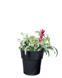 Self-Watering Planters, Flower Pots & Containers ...