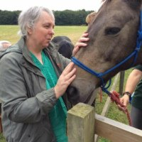 Square Hole Club at Foxdale Equine Centre