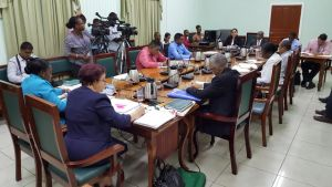 The Parliamentary Committee on Foreign Relations in session on Thursday under the chairmanship of the PPPC's Gail Teixeira (backing camera in blue dress).
