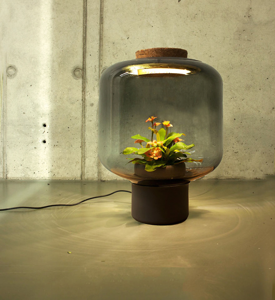 Lamp Plant These Eco Lamps Also Grow Plants In Windowless Spaces Demilked