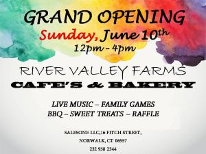 Grand_Opening_Flyer_Template-11