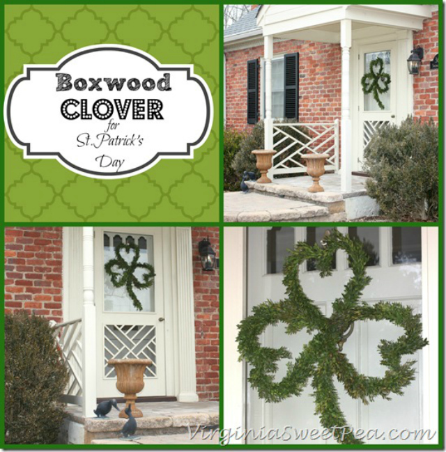 Boxwood-Clover-for-St.-Patricks-Day-by-virginiasweetpea.com_thumb
