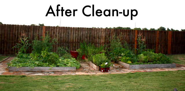 garden cleanup after