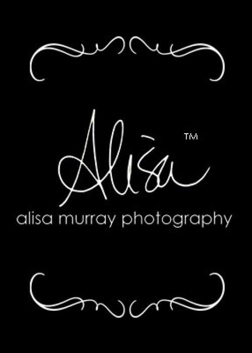 alisa murray logo