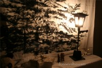 DIY Narnia party | denna's ideas
