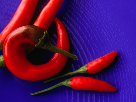 Red Chili Peppers on a Blue Plate