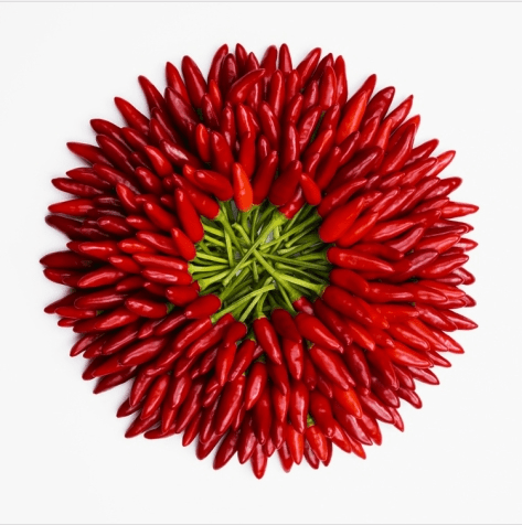 A Wreath of Chile Peppers