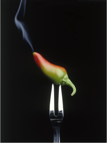 Steaming Chile on a Fork
