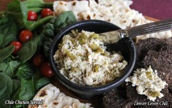 Chile Chicken Spread is perfect on crackers, sandwiches, with chips. Great for a buffet party, it's simple, yet has a unique flavor
