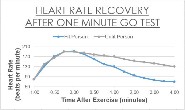 Heart Rate Recovery: An easy way to track your fitness ...