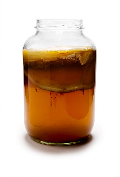 Does Kombucha Cure Cancer?
