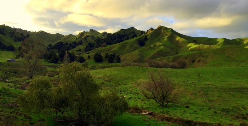 Derek Loudermilk Art of Adventure New Zealand North Island Central