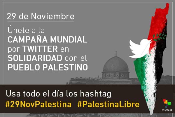 29 de Novembro, Dia Internacional de Solidariedade ao Povo Palestino