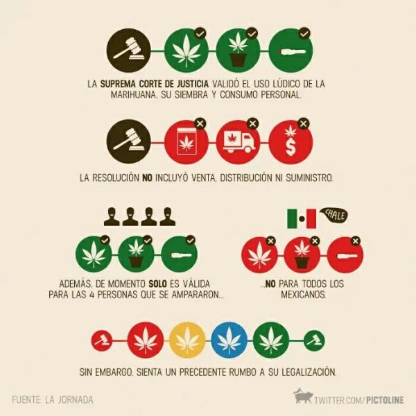 México: Tribunal aprova alguns usos de maconha, mas só para quatro pessoas