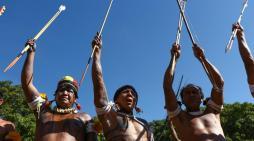 Mobilização Nacional Indígena pela terra e pela vida