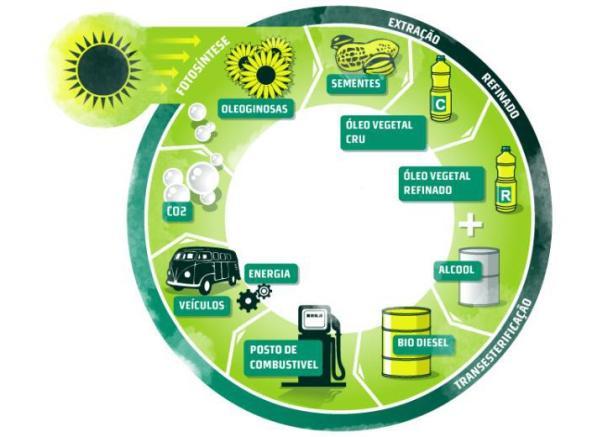 O biodiesel brasileiro é melhor que o europeu, afirma APROBIO