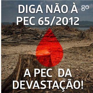 Proposta de emenda à Constituição Federal coloca o Brasil em perigo