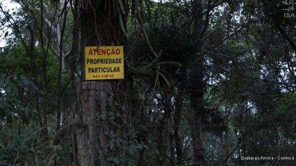 Posseiros ilegais espalham placas de propriedade particular dentro da Terra Indígena | Gustavao Amora - Comova
