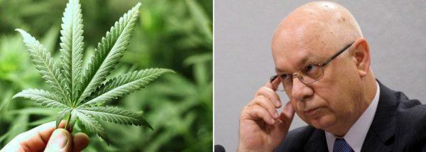 Morte de Teori afeta debate sobre descriminalização das drogas