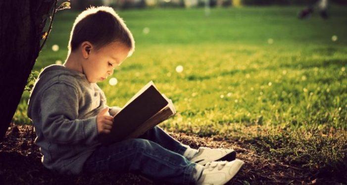 8ª Semana Municipal do Livro Infantil promove atividades culturais gratuitas em Florianópolis