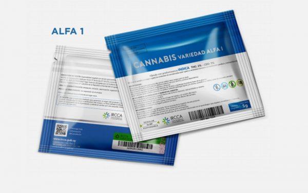Uruguai começa a vender maconha em farmácias nesta quarta-feira