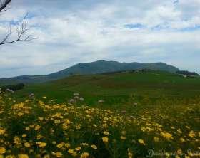 A Sicília na Primavera