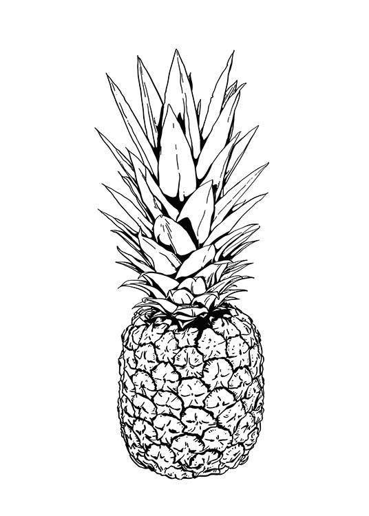 desenio auto electrical wiring diagramposter with pineapple illustration black and white print