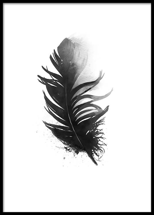 Bilder Print Black And White Poster With Pretty Aquarelle Feather, Print