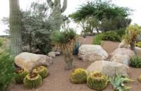 Landscape rock  Arizona Desert Xeriscape