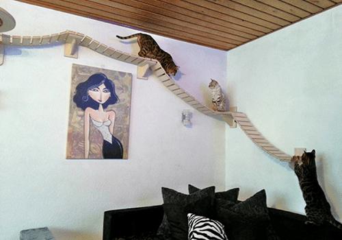 Id es pour fabriquer un arbre chat maison des hommes - Fabriquer un album photo maison ...