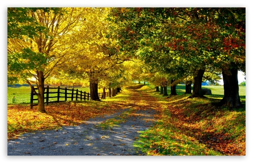 Colorful Fall Scene Wallpaper Красивые обои осени на рабочий стол 50 Autumn Wallpapers