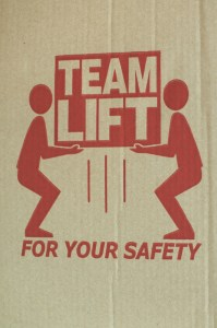Team Lift, Design, Collaboration